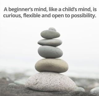 Beginners Mind 3.jpg