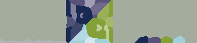 tsm-logo